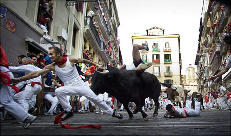The Blood of the Bulls